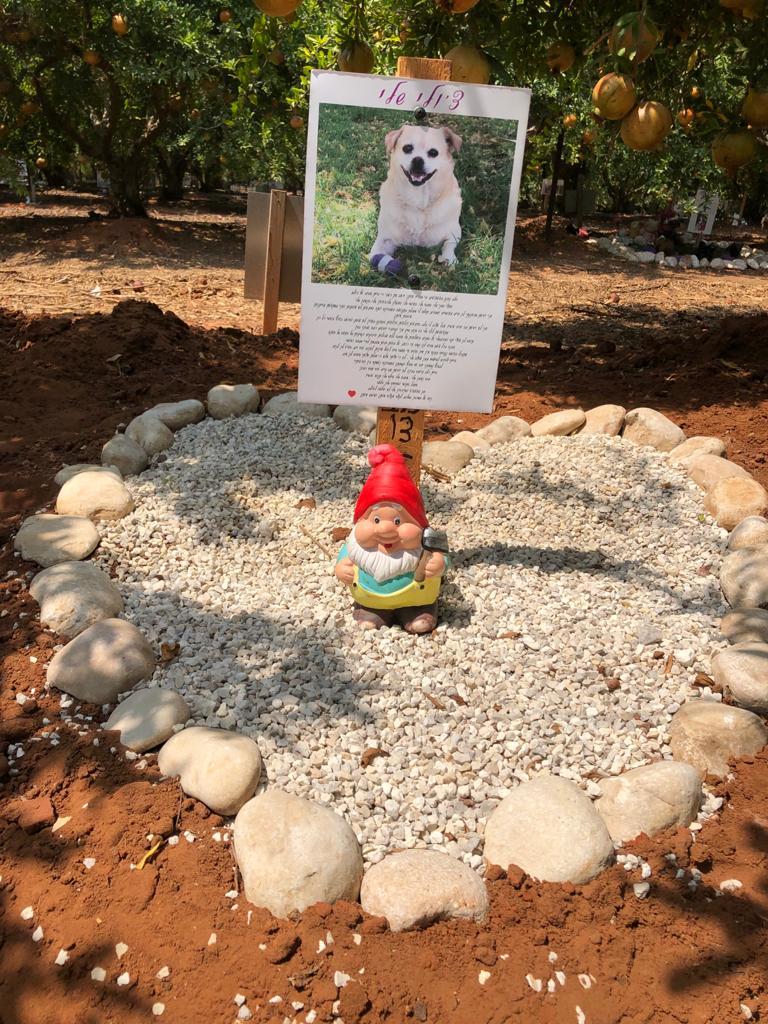 בית קברות לכלבים