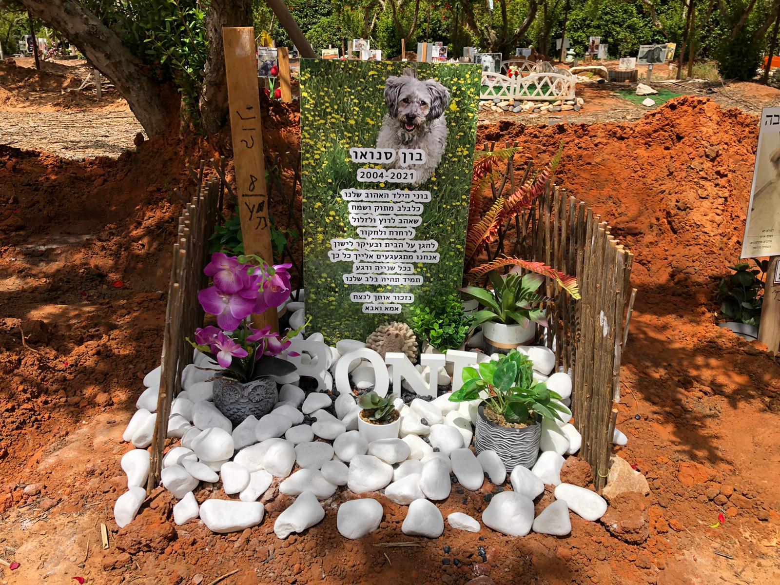 בית קברות לחיות מחמד